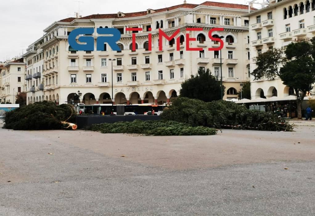 Θεσσαλονίκη: Έφτασε το χριστουγεννιάτικο δέντρο στην Αριστοτέλους (ΦΩΤΟ+VIDEO)