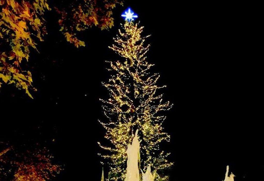 Δ.Τρικκαίων: Διαδικτυακά η φωταγώγηση του υψηλότερου χριστουγεννιάτικου δέντρου