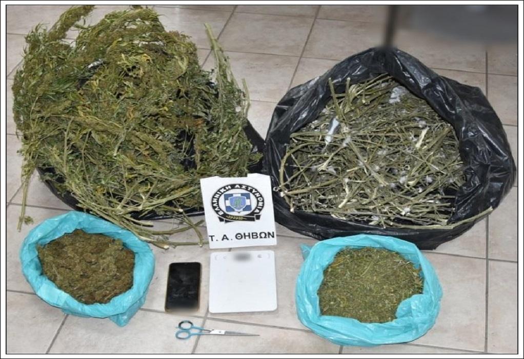 Θήβα: Συνελήφθη για κατοχή περίπου 4 κιλών κάνναβης