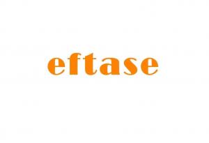 Το δίκτυο του eftase αναπτύσσεται