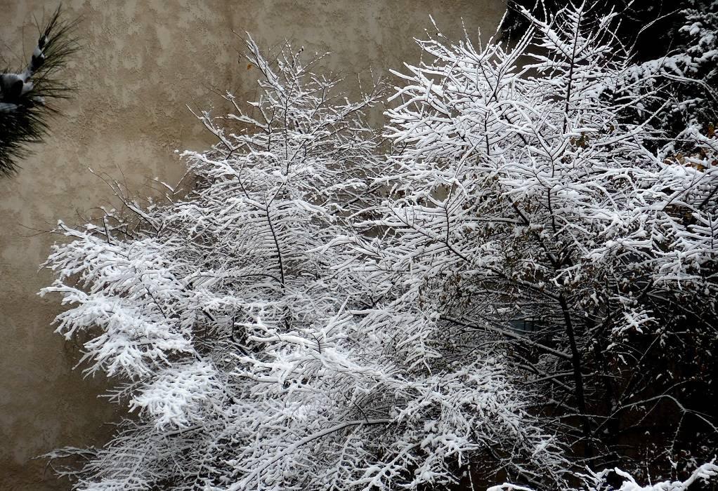 Τα πρώτα χιόνια στα ορεινά της Θεσσαλονίκης (ΦΩΤΟ-VIDEO)