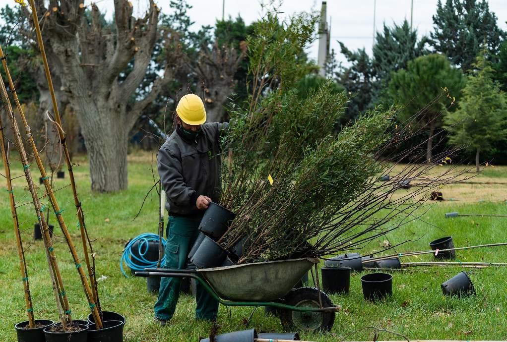 Θεσσαλονίκη: Διάκριση για τον πρώτο Φαινολογικό Κήπο