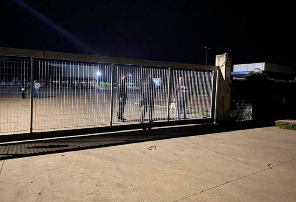 Ηλεία: Νεκρός από επίθεση σκύλων 56χρονος σε συσκευαστήριο