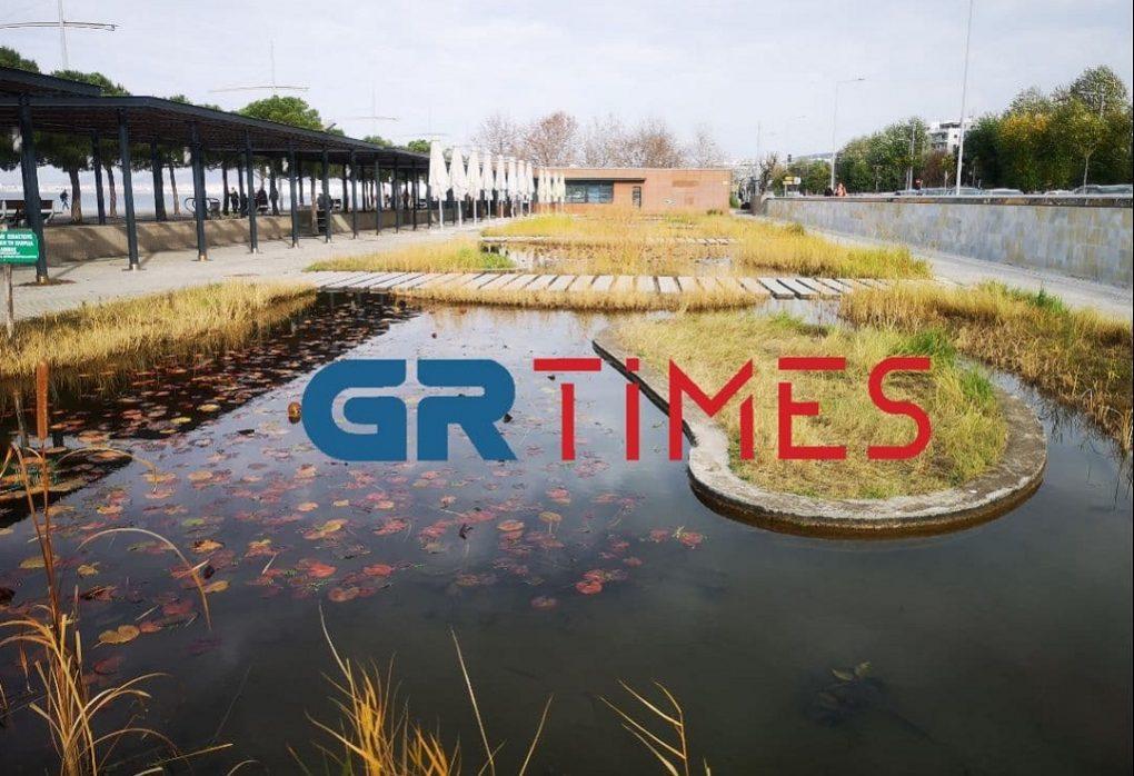 Φίλοι Ν. Παραλίας: Επιφυλακτικοί με την απόφαση του Δήμου για την ανάπλαση