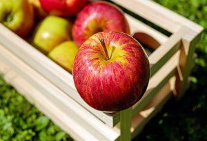 Γιατί η απόρριψη των επεξεργασμένων τροφών είναι το «κλειδί» για καλή ζωή;