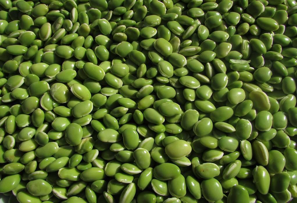 Πράσινη φάβα: Γνωρίστε τα διατροφικά της οφέλη