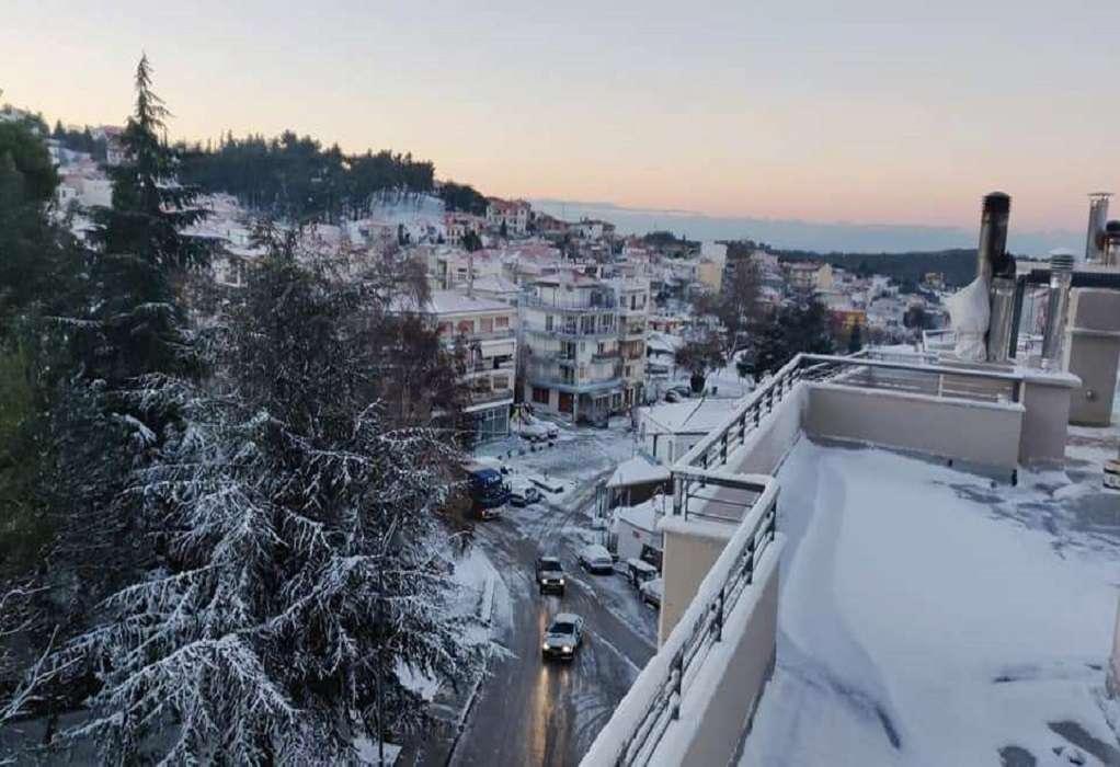 Στα λευκά ξύπνησε η Χαλκιδική – Ανοιχτά τα σχολεία (ΦΩΤΟ-VIDEO)