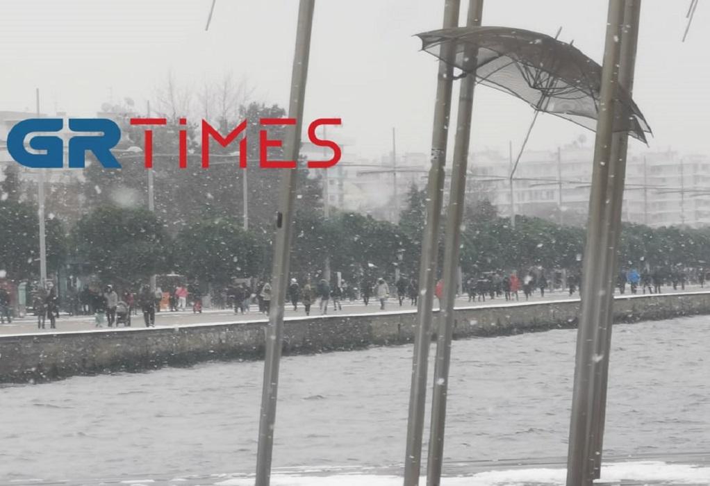 Θεσσαλονίκη: Χιονοπολεμος, snowboard και φωτογραφίες στο λευκό τοπίο (ΦΩΤΟ+VIDEO)