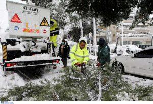 Κακοκαιρία: Έπεσαν περισσότερα από 20 δέντρα στον δήμο Πεντέλης