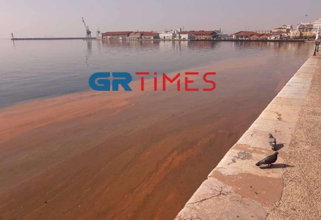 «Κόκκινος» ο Θερμαϊκός λόγω Ερυθράς Παλίρροιας (ΦΩΤΟ-VIDEO)