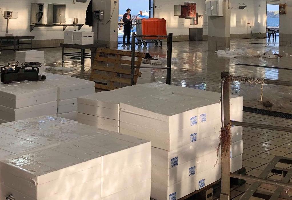 Μηχανιώνα: Οι λιμενικές αρχές κατέσχεσαν 535 κιλά ψαριών στην ιχθυόσκαλα