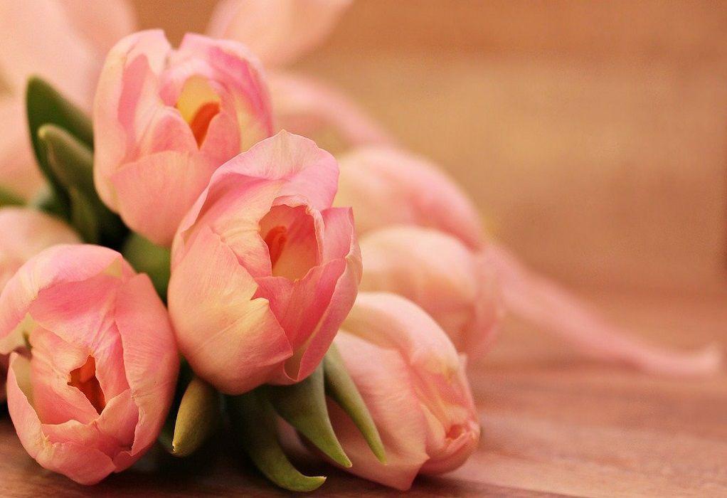 Θεσσαλονίκη: Λουκέτο και πρόστιμο σε  παντοπωλείο που πουλούσε λουλούδια