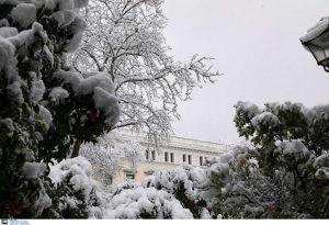 Σε κατάσταση έκτακτης ανάγκης ο Δήμος Διονύσου με εντολή Χαρδαλιά
