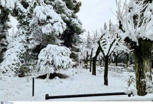 Κακοκαιρία: Σε ετοιμότητα ο Δήμος Πειραιά για την προστασία των πολιτών