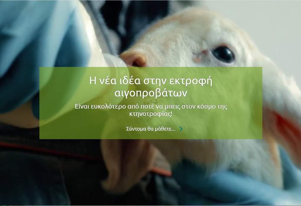 Κοντά ΔΕΗ και Proud Farmers για τη Θερμοκοιτίδα Κτηνοτρόφων