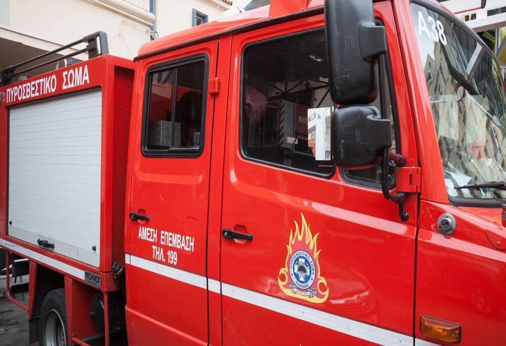 Πυρκαγιά παραπλεύρως της Εθνικής Οδού στο ύψος της Χαλάστρας (VIDEO)