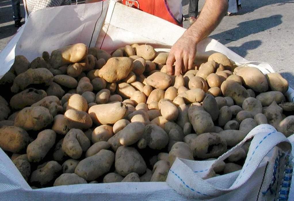 Μιχτσόγλου: Αν δεν πουληθούν οι πατάτες θα πληρώσουμε για να τις θάψουμε! (ΗΧΗΤΙΚΟ)