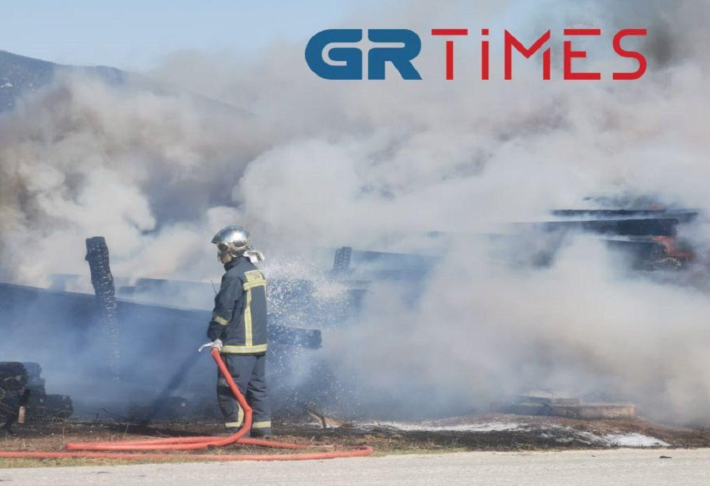 Έβρος: Σε διαθεσιμότητα 2 Πυροσβέστες λόγω…σελφ τεστ-Τι λένε συνδικαλιστές