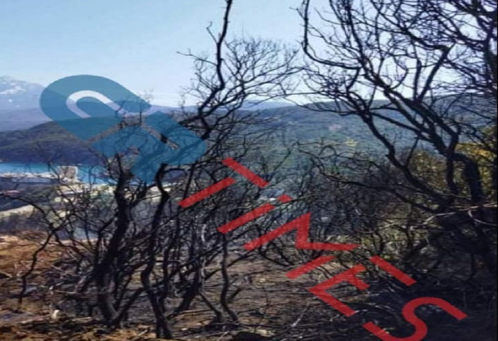 Φωτιά στο Άγιο Όρος: Βίντεο με την επιχείρηση κατάσβεσης