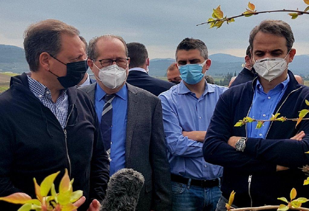 Σπ. Λιβανός για παγετό από Νεμέα: Οι παραγωγοί θα αποζημιωθούν με βάση τα δεδομένα της ειδικής καταστροφής