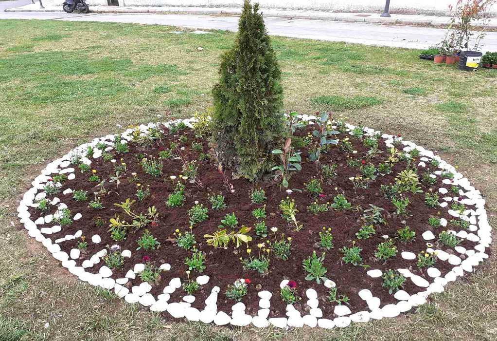 Δ. Νεάπολης – Συκεών: 28.500 νέα φυτά και 1.000 τ.μ. χλοοτάπητας χρωματίζουν την καθημερινότητα