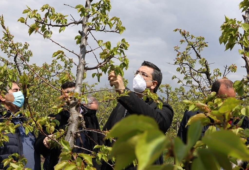 Απ. Τζιτζικώστας: Άμεσες αποζημιώσεις στους αγρότες της Ημαθίας και της Πέλλας