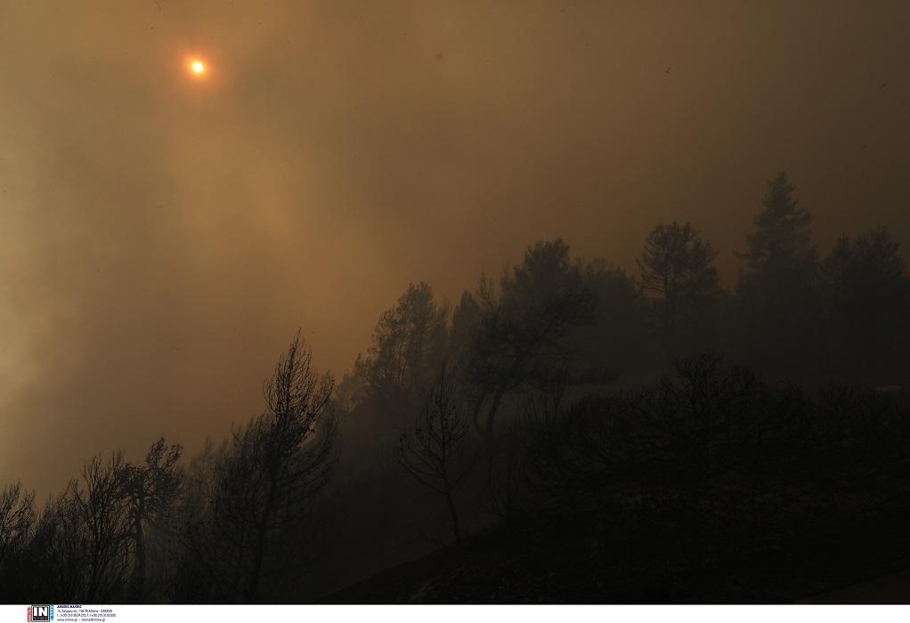 Υπό μερικό έλεγχο η πυρκαγιά στη Χίο