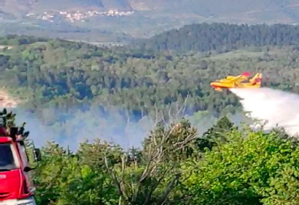 Ηλεία: Πυρκαγιά μέσα σε χαράδρα-Μεγάλη κινητοποίηση της πυροσβεστικής