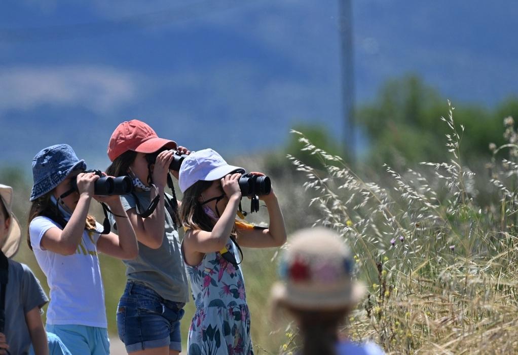 Περιβάλλον: Εθελοντικός καθαρισμός και παρατήρηση πουλιών, φωτογραφία-2