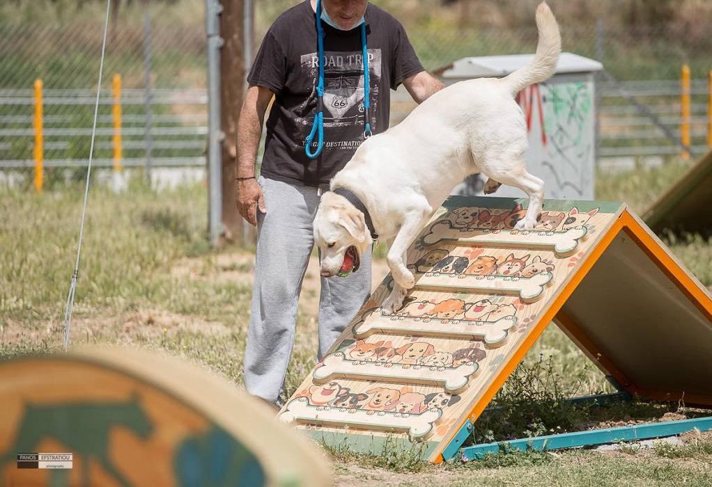 Δ. Πυλαίας – Χορτιάτη: Στο Ελαιόρεμα το πρώτο πάρκο σκύλων (ΦΩΤΟ)