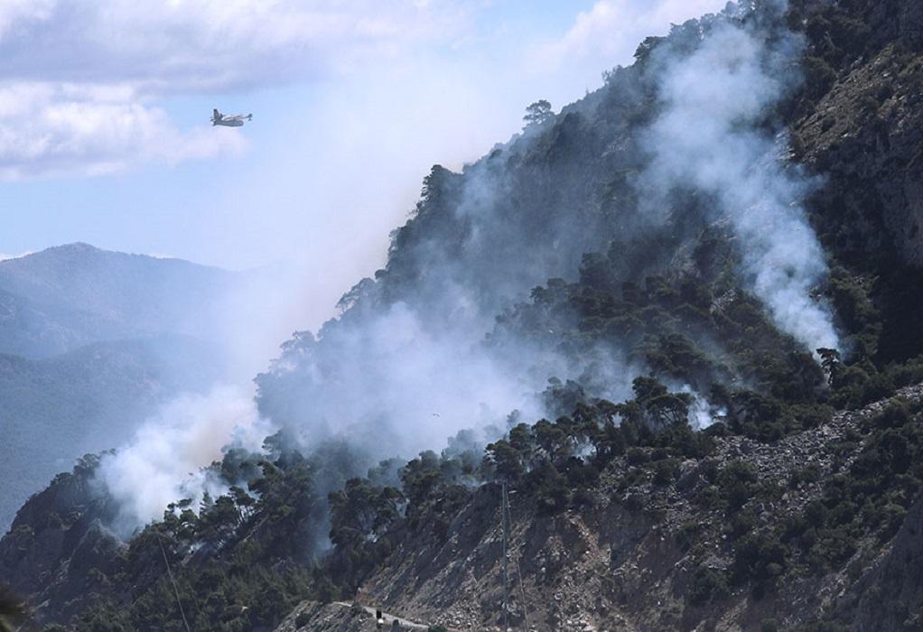 Αλεξ/πολη: Ολονύχτια επιχείρηση κατάσβεσης της πυρκαγιάς στη Λευκίμμη