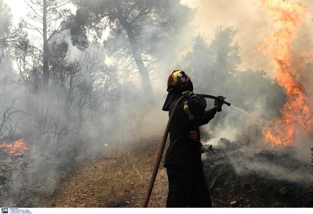 Φωτιά στον Σχίνο: Νέο μήνυμα του 112 – Εκκενώνονται και άλλοι οικισμοί