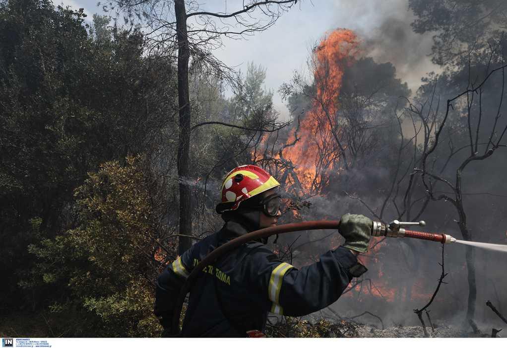 Φωτιά στον Σχίνο Κορινθίας: Προς Μέγαρα το πύρινο μέτωπο – Εκκενώνονται οικισμοί