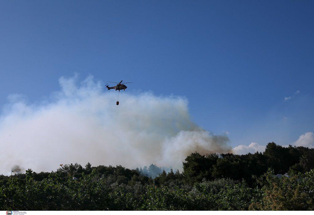 Φωτιά στην Κορινθία: Σε ύφεση η πυρκαγιά – Κάηκαν πάνω από 55.000 στρέμματα