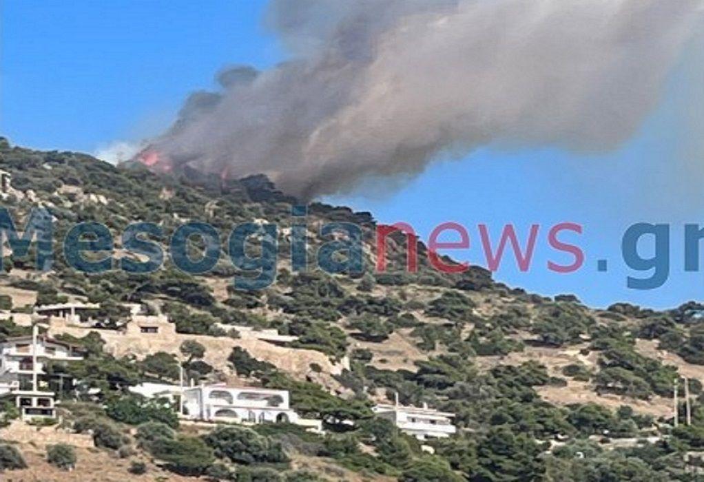 Φωτιά στην Αγία Μαρίνα Κορωπίου – Άνοιξε η λεωφόρος Αθηνών-Σουνίου