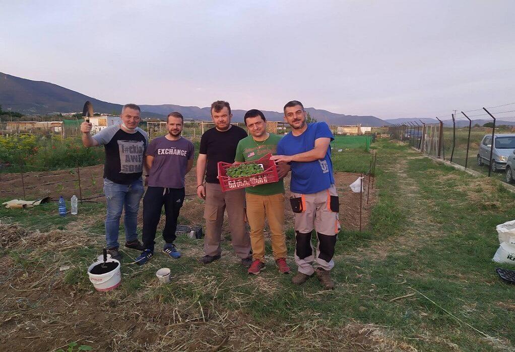 """ΟΑΘ – Ομάδα """"Σποροφύλακες"""": Στόχος μας να γεμίσουν τα μπαλκόνια με λαχανικά"""