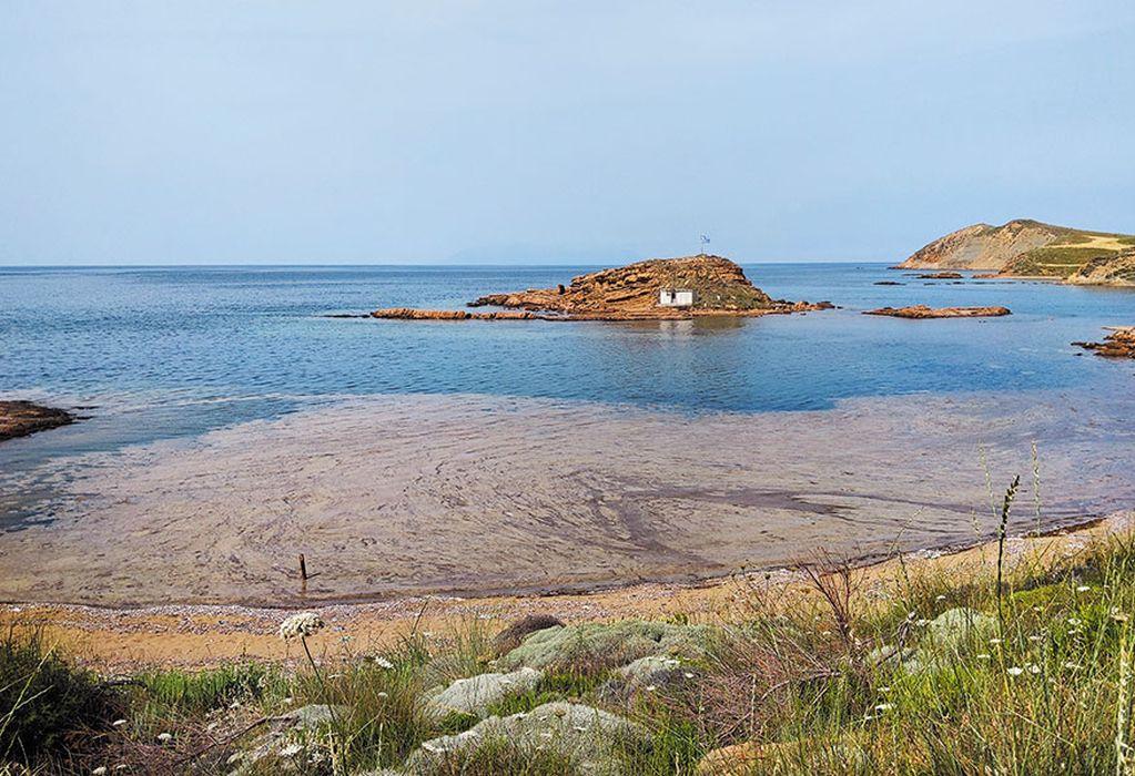Υπ. Περιβάλλοντος: Αυτοψία στη Λήμνο για τη θαλάσσια βλέννα