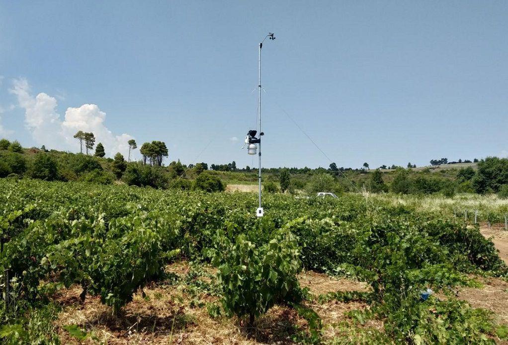 Μετεωρολογικοί σταθμοί: Ένα απαραίτητο εργαλείο για τον σύγχρονο αγρότη