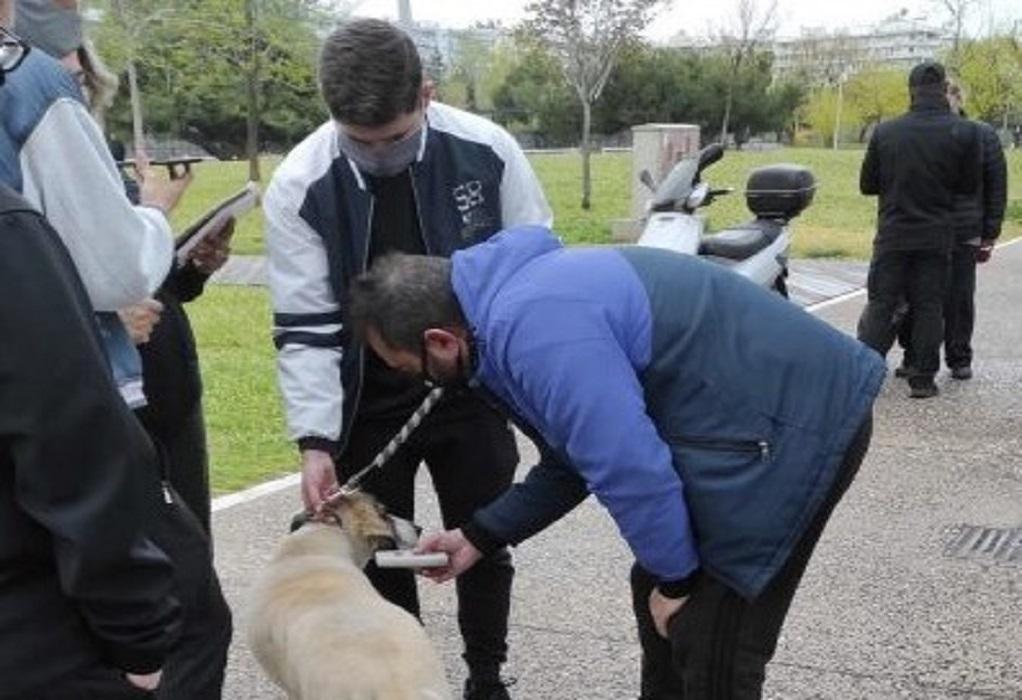 ΕΛΑΣ: Έλεγχοι σε ιδιοκτήτες δεσποζόμενων ζώων
