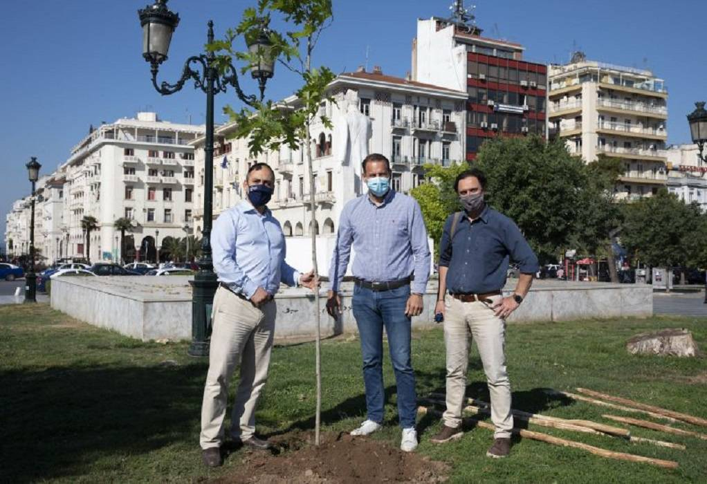 ΕΒΕΘ: «Υιοθέτησε» χώρο κοινόχρηστου πρασίνου στην Πλατεία Δικαστηρίων