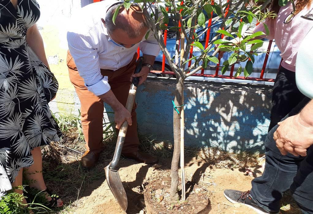 Δ. Λαγκαδά: Δενδροφύτευση στο 1ο δημοτικό για την Παγκόσμια ημέρα περιβάλλοντος