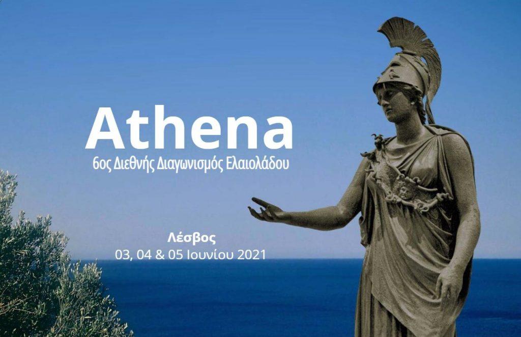 Μυτιλήνη: Ξεκινά ο διεθνής διαγωνισμός ελαιολάδου