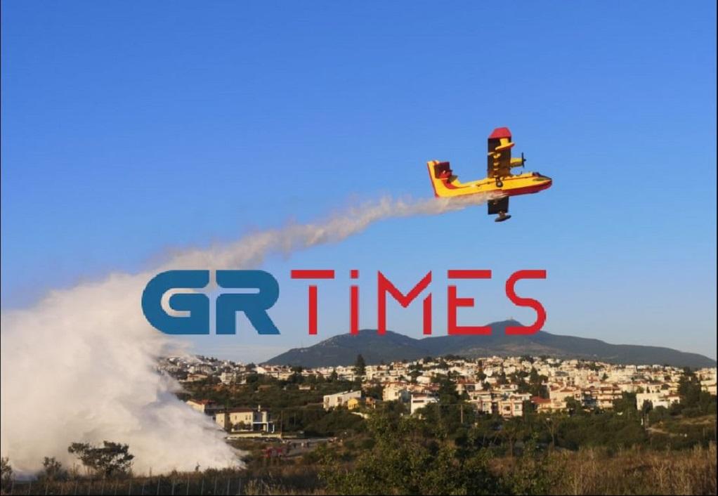 Θεσσαλονίκη: Δύο συλλήψεις για τις πυρκαγιές σε Λακκιά και Πανόραμα