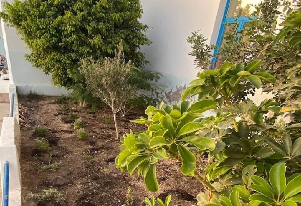 Κίμωλος: Βοτανικός κήπος για τους μαθητές του δημοτικού
