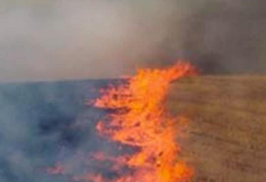 Θεσσαλονίκη: Φωτιά ξέσπασε σε ξηρά χόρτα στα Λαγυνά