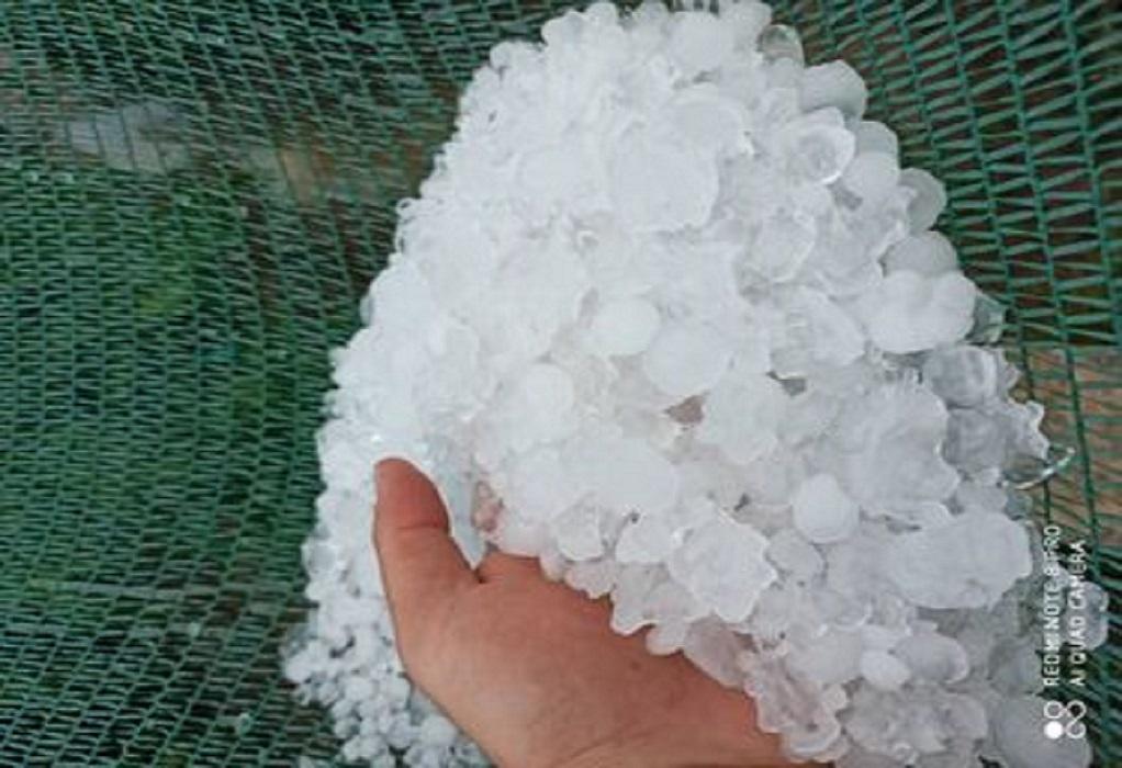 Τρίκαλα: Έπεσε χαλάζι σε μέγεθος… καρυδιού