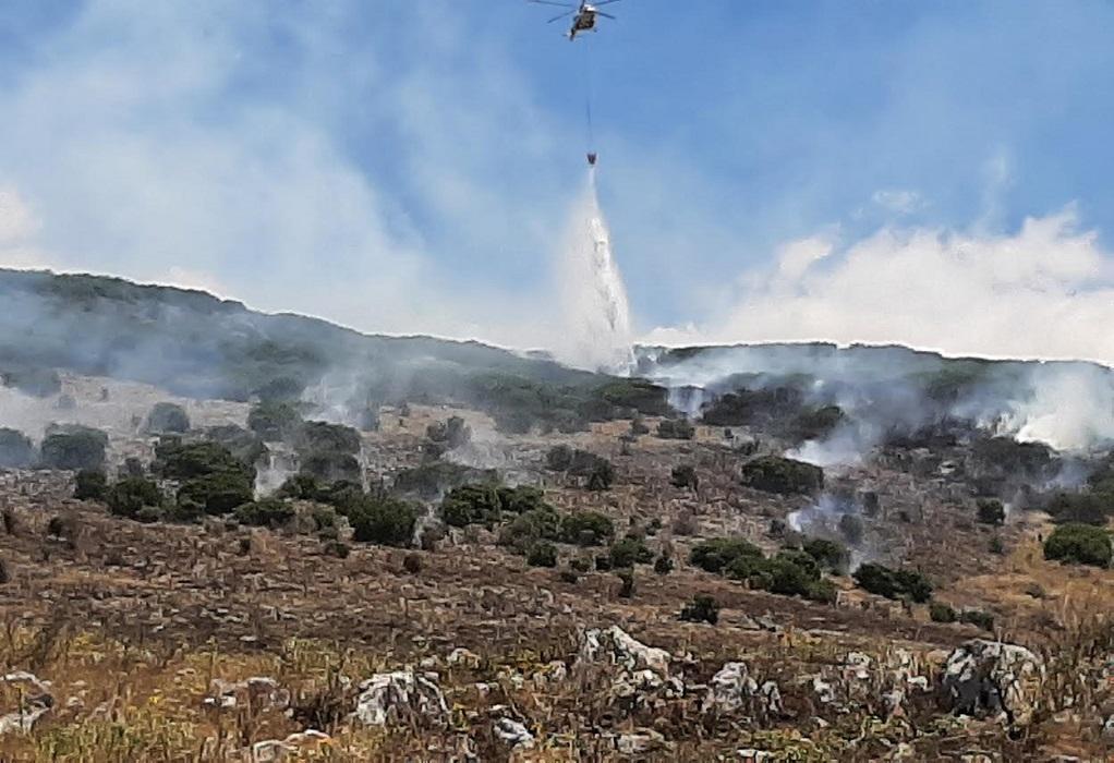 Δ. Ιωαννιτών: Συστάσεις προς τους πολίτες για τις πυρκαγιές
