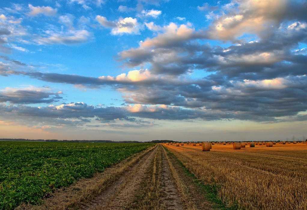 H νέα η Κοινή Αγροτική Πολιτική μέσα από 8 ερωτήσεις – απαντήσεις