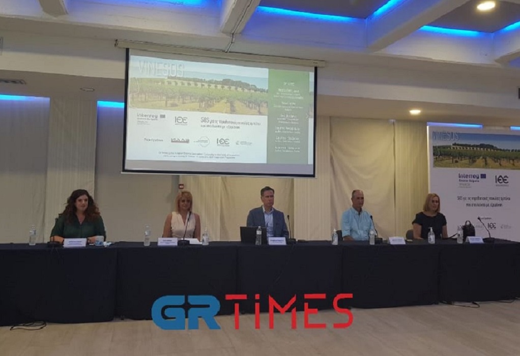 VINE SOS: Υπό εξαφάνιση παραδοσιακές ποικιλίες αμπέλου