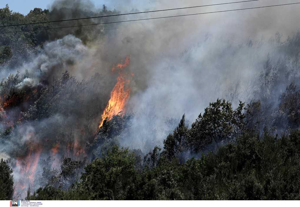 Τέσσερις πυρκαγιές σε Ελευσίνα και Ασπρόπυργο, σε εξέλιξη και στον Βαρνάβα – Νέα Ενημέρωση